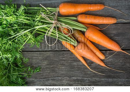 Fresh organic carrots with green tops and twine on wooden table closeup. Copy space. Top view.