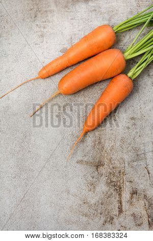 Fresh organic carrots with green tops on rustic table closeup. Copy space. Top view.