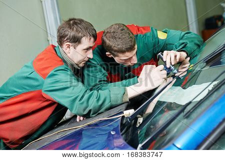 Windscreen repairman workers