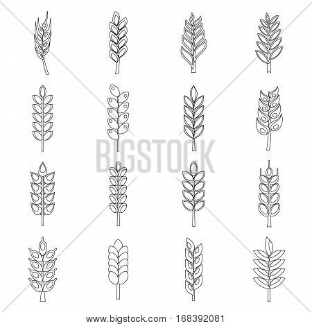 Ear corn icons set. Outline illustration of 16 ear corn vector icons for web