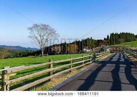 Beautiful landscape and farm