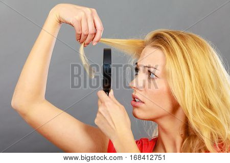Split ends problem dry effect haircare concept. Unhappy blonde woman looking at destroyed damaged hair through magnifying glass.. Grey background