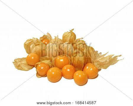 Many vivid yellow ripe Cape gooseberries, some with calyx and some without calyx isolated on white background