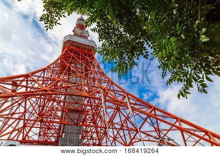 Tokyo Red Tower With Blue Sky