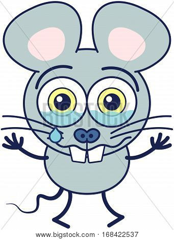 Cute gray mouse in minimalistic style with huge rounded ears, bulging eyes and big teeth while crying bitterly and showing a very sad and dispirited mood