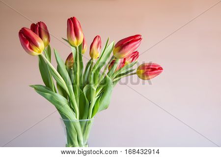 Bouquet of red and yellow tulips in a glass vase
