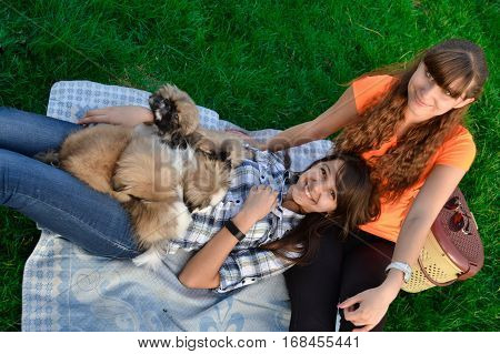 Outdoor portrait of two cute girls hugging with ginger cat and puppy of Chinese Shar Pei dog on green grass. Ywo happy smiling cheerful girl play with small fluffy Pekinese puppy outdoors in dog park
