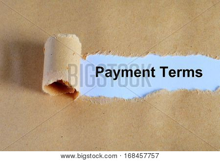 Payment Terms Word Written Under Ripped And Torn Paper.