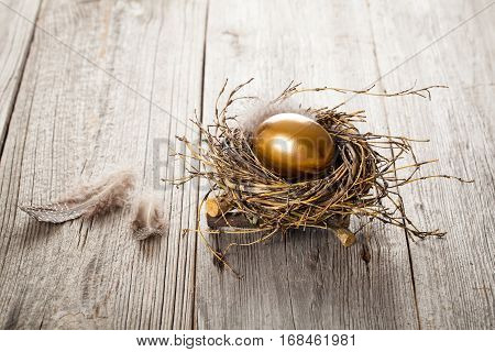 Golden egg in nest on dark vintage wooden background