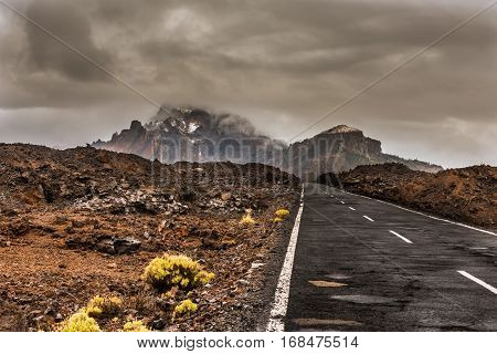 Road in volcanic desert Tenerife, Canary. Asphalt and white line on road