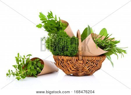 Fresh herbs oregano rosemary parsley and sage isolated on white background