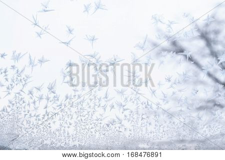 Frosted glass at -5 Celsius degrees. Winter at the Krasnodar, south Russia.