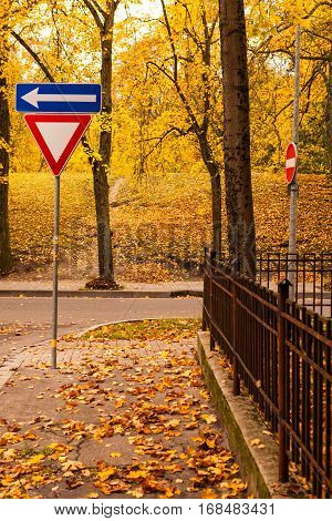 Road signs on crossroad covered with golden leaves near city park in golden autumn