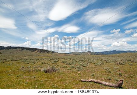 Rolling Hills under cirrus cloudscape in northern Yellowstone National Park in Wyoming USA