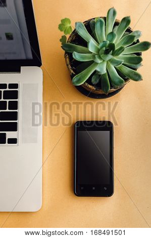 Stylish Silver Laptop Pen Phone And Succulent On Wooden Craft Background, Marketing Work And Freelan