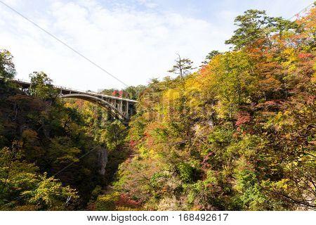 Bridge in Naruko Gorge of Japan