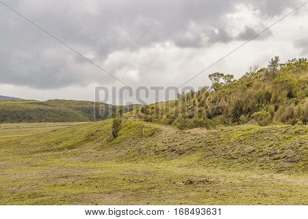 Cotopaxi National Park Ecuador