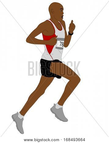 detailed illustration of marathon runner - vector