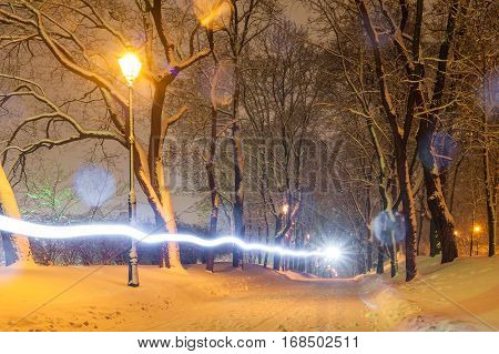 Winter evening in a central park in Kiev, Ukraine. Path covered in snow and a light streak going through the frame in a big park with trees. Perfect for Christmas or winter illustrations