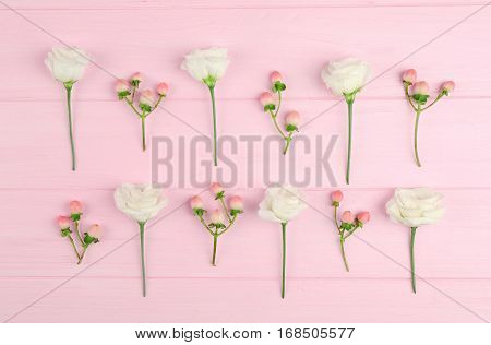Beautiful Chrysanthemum and hypericum on pink wooden background