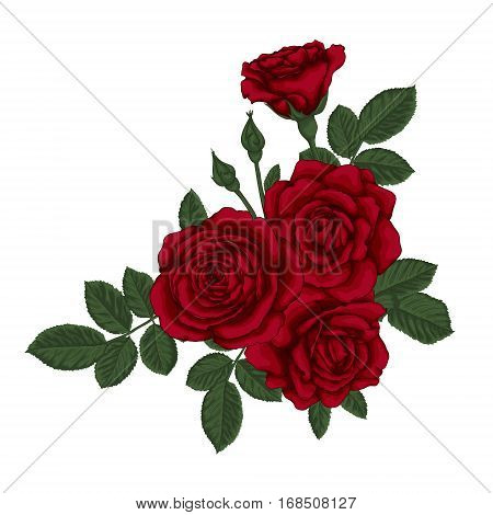 beautiful bouquet with red roses and leaves. Floral arrangement. design greeting card and invitation of the wedding birthday Valentine's Day mother's day and other holiday