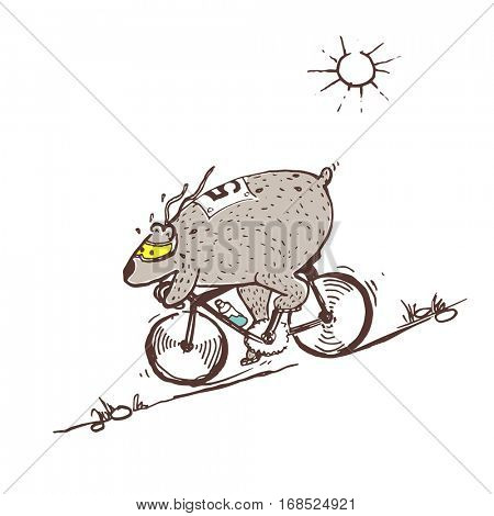 Free Hand Drawing of Bear Riding Bike Very Fast