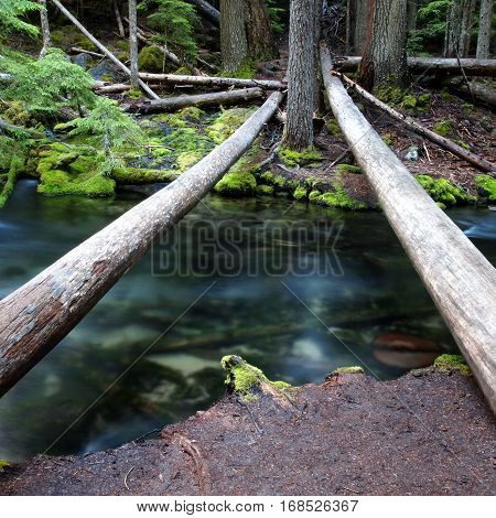 Bare logs span the blue waters of Clearwater Creek connecting the banks that have fir trees and moss covered rocks on a summer day in the forests of Southern Oregon.