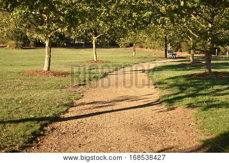 gravel, unpaved path through park at sunset