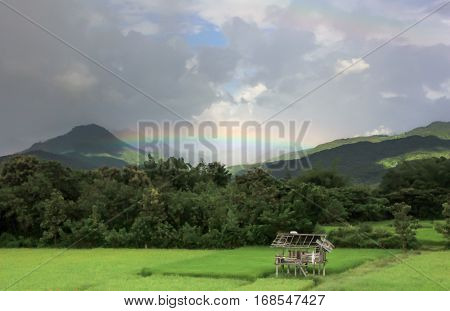A hut on ricefield with rainbow above the sky. for background.
