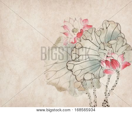 Chinese painting of a Lotus on old paper background.