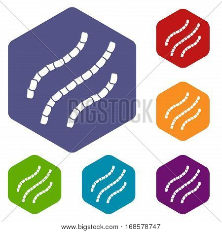 Escherichia coli icons set rhombus in different colors isolated on white background