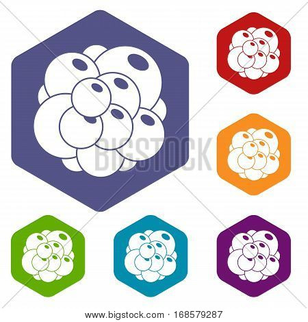 Ovary icons set rhombus in different colors isolated on white background
