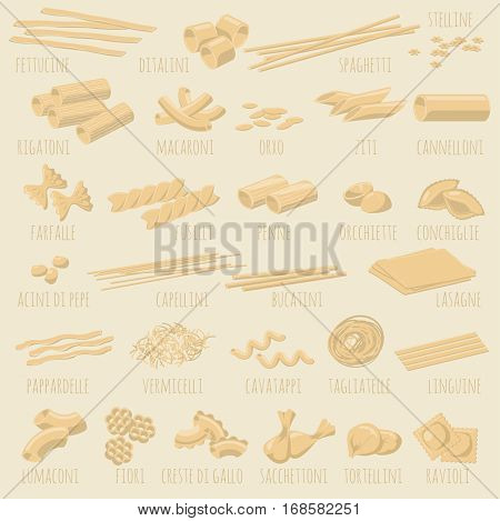 Italian Pasta guide, shapes and types collection. Vector illustration, flat design vector icon restaurant menu design element set.