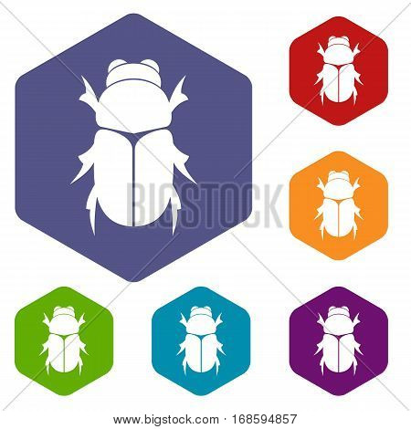 Chafer beetle icons set rhombus in different colors isolated on white background poster