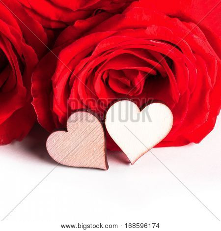Roses and hearts isolated on white background, Valentines day