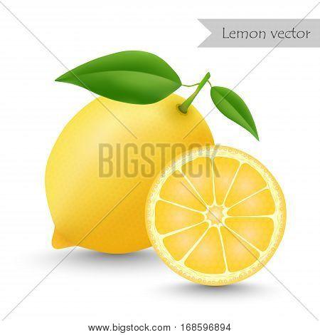Lemon vector isolated on white background. Half lemon.