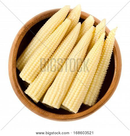 Pickled whole baby corn in wooden bowl. Preserved small cooked corn with bright yellow color in a solution of vinegar and salt. Isolated macro food photo close up from above on white background.
