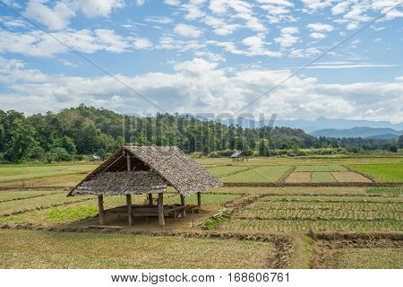Natural view with the small hut at Pai, Thailand