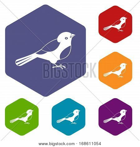 Bird icons set rhombus in different colors isolated on white background