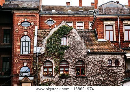Traditional house in the German style in Bavaria. The architecture of houses in Germany. The house is covered with plants.
