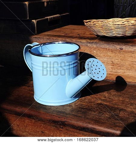 Watering Can Sapling Gardener Growth Cultivate Concept