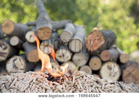 Pile of biomass in flames in front wood
