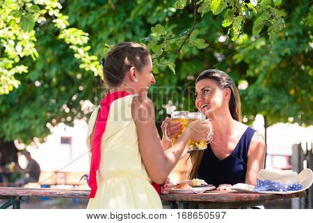 Women in beergarden having refreshment sitting under tree in the shade as it is hot