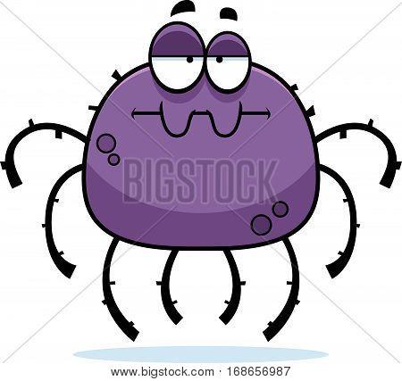 Bored Little Spider