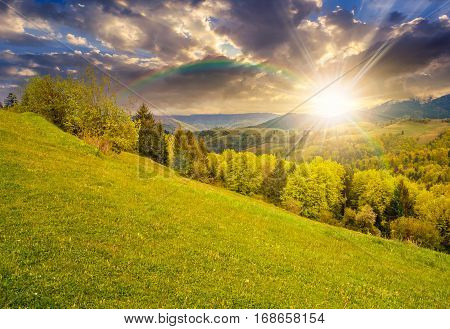 Meadow With Trees In Mountains At Sunset