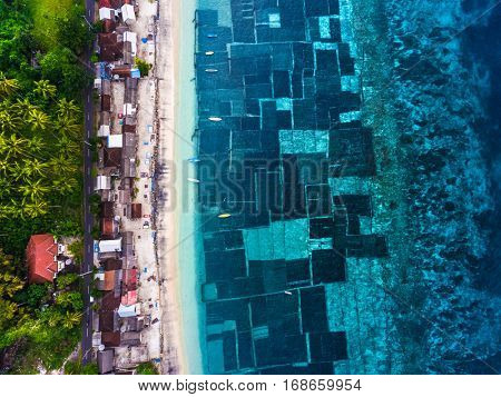 Aerial shot of the coast of the island of Nusa Penida with sea weed gardens. Indonesia