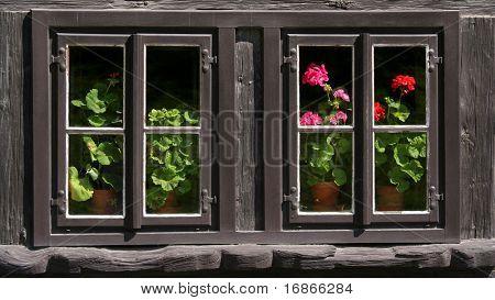 Rustic window in Ratiborice village - Czech republic - Europe
