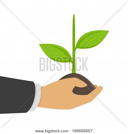 Grow business, infographics concept. Businessman gardener holding a green sprout in hand. Care and development illustration. Planting sapling.