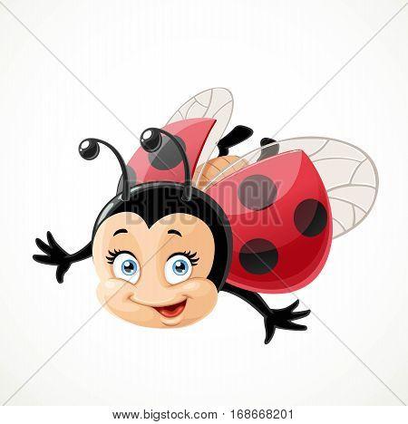 Cute Cartoon Ladybug Fly On A White Background