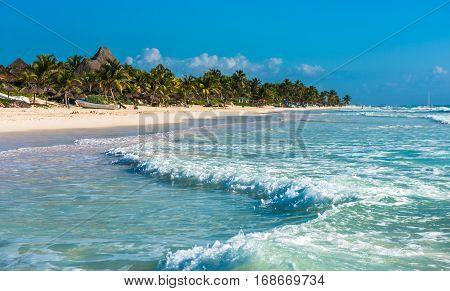 Highly detailed of caribbean beach Tulum Mexico